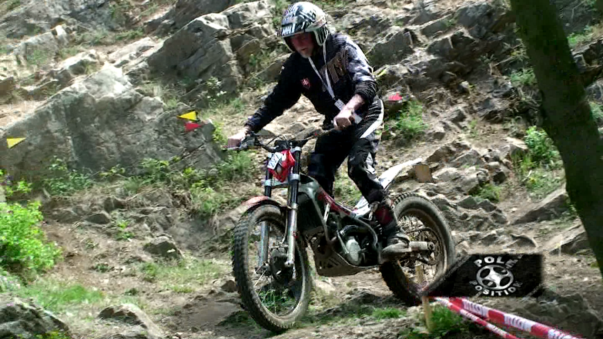trial 2013